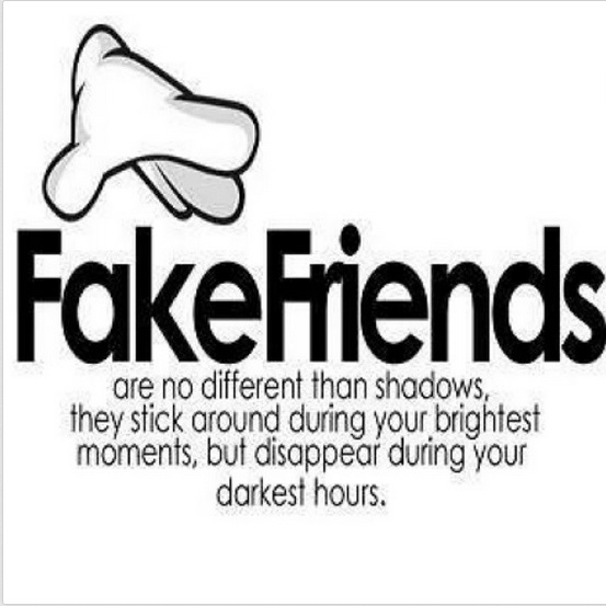 106110-Fake-Friends